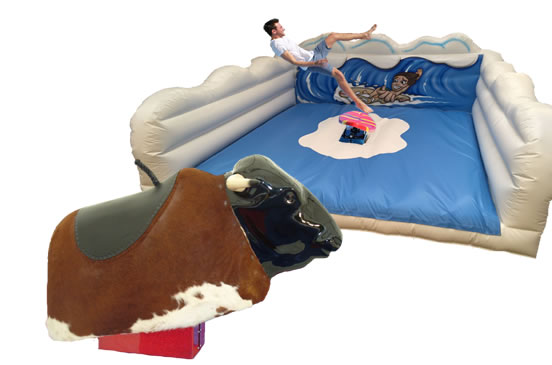 Rodeo Bull and Surf Simulator